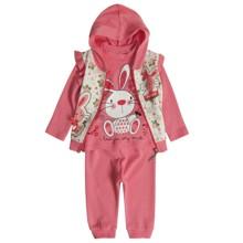 Костюм 3 в 1 для девочки Baby Sport оптом (код товара: 2842)