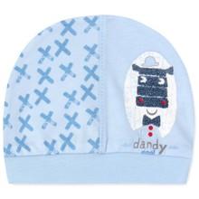 Шапка для новорожденного мальчика (код товара: 41673)