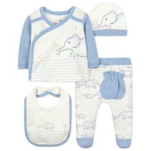 Комплект 5 в 1 для новорожденного мальчика (код товара: 44413)