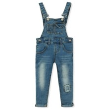 Комбинезон джинсовый (код товара: 8719)